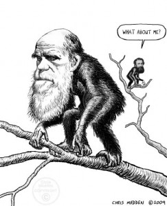 darwin as ape russel wallace caricature