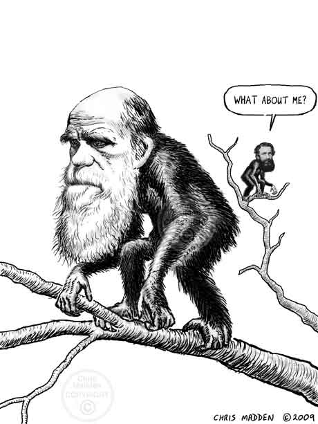 Alfred Russel Wallace caricature and Charles Darwin caricature