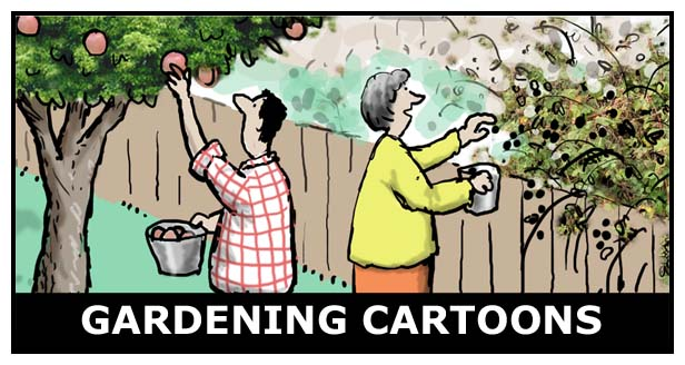 Gardening Cartoons
