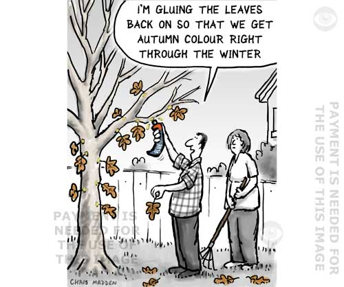 autumn leaves cartoon