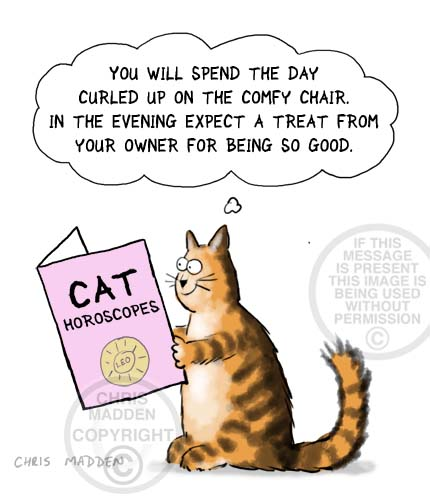 Cat cartoon. Cat horoscopes