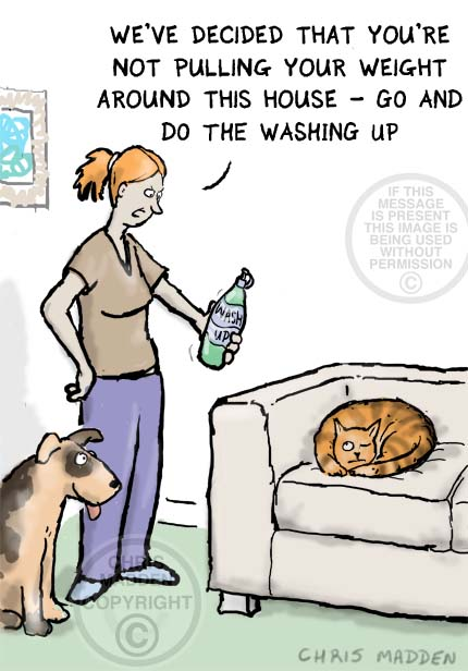 Cat cartoon. Cat on sofa - not contributing to housework