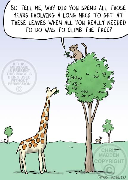 Evolution cartoon - the giraffe's neck